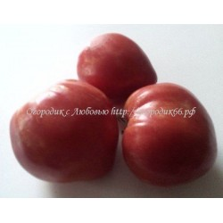 Крупная гроздь