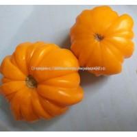 Лотарингская красавица оранжевая (Beauty Lottringa Orange) Франция
