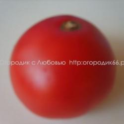 Малиновый Борский