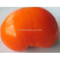 Оранжевая клубника плоскоокруглая (Orange Strawberry)