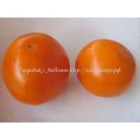 Оранжевый гигант Дмитриева