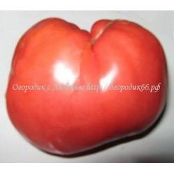 Сердце бизона