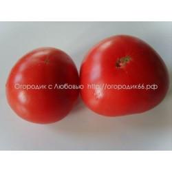 Сибирское яблоко