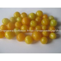 Сладкий  черри желтый ( Sweet Cherry Yellow)