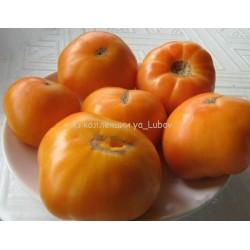 Тайванский ананас