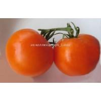 Экзотический фрукт,  США