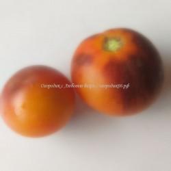 Золотое яблоко из Сен Жан де Борежара, оранжевый (Pome d'or de