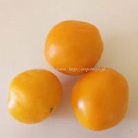 Бочонок Оранжевый (Woodle Orange)