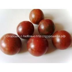 Black cherry (Чёрная вишня)